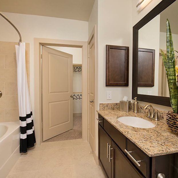 Apartment Rentals Houston bath room_cir