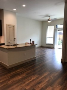 1 Bedroom Apartments for Rent in Houston, TX (2)