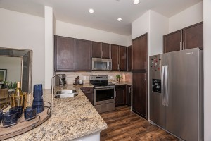 One Bedroom Apartment for rent in Houston, TX