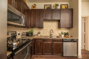 One Bedroom Apartments for rent in Houston, TX