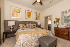 Two Bedroom Apartments for rent in Houston, Texas